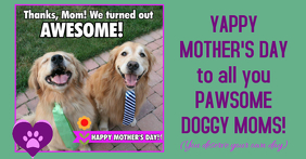 Happy Mother's Day to Dog Moms
