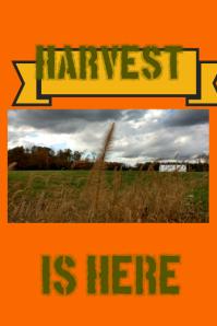 Harvest is Back