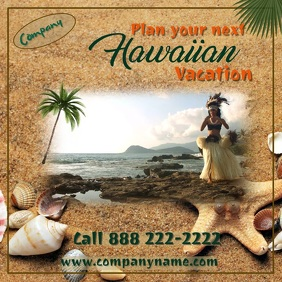 Hawaiian Digital Travel Ad