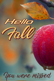 Hello Fall Poster