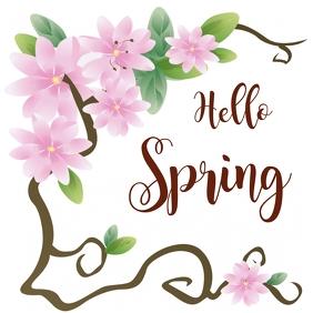 Hello Spring social network flyer
