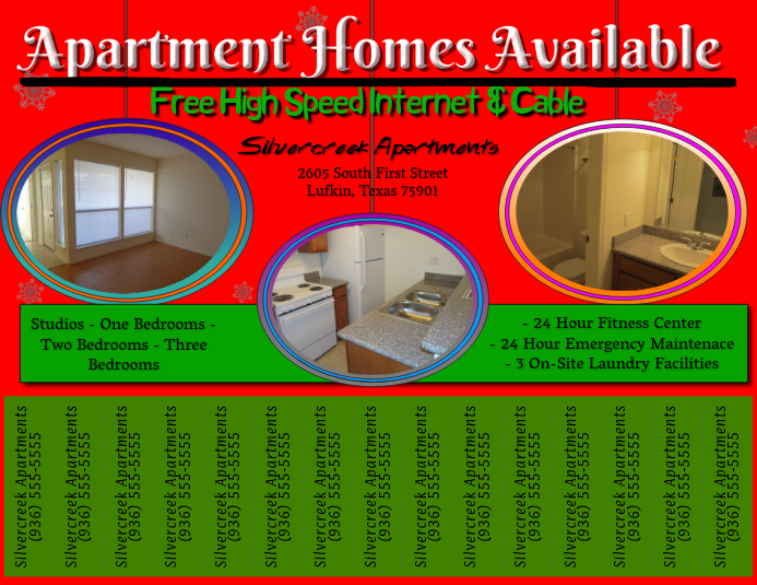 Holiday Apartment Flyer