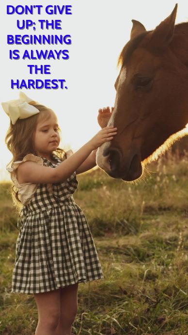 HORSE NEVER GIVE UP QUOTE TEMPLATE Estado de WhatsApp