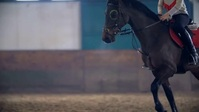 Horse riding video YouTube Duimnael template