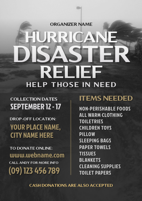 Hurricane Disaster Relief Flyer