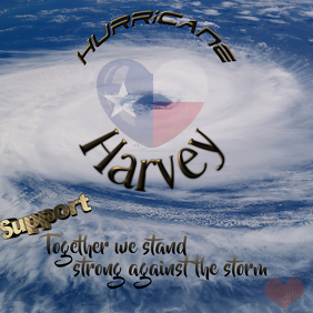 Hurricane Support Flyer