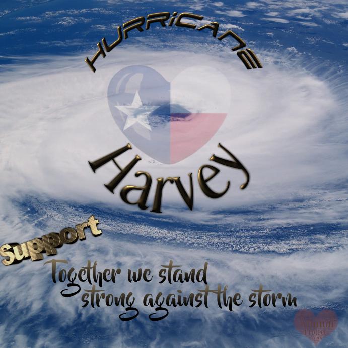 Hurricane Support Flyer