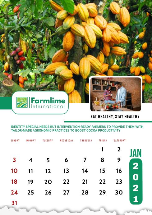 January 2021 Calendar Template A2