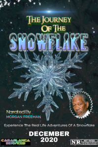 JOURNEY OF THE SNOWFLAKE