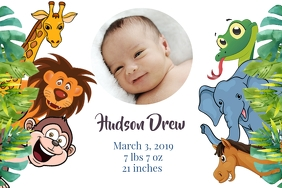 Jungle Animals Baby Announcement
