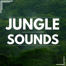 jungle sounds album band cover Pochette d'album template