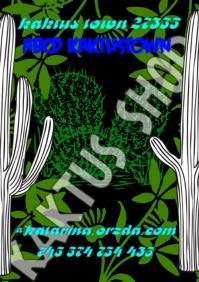 Kaktus Plants Shop Poster Store Retail Event A4 template