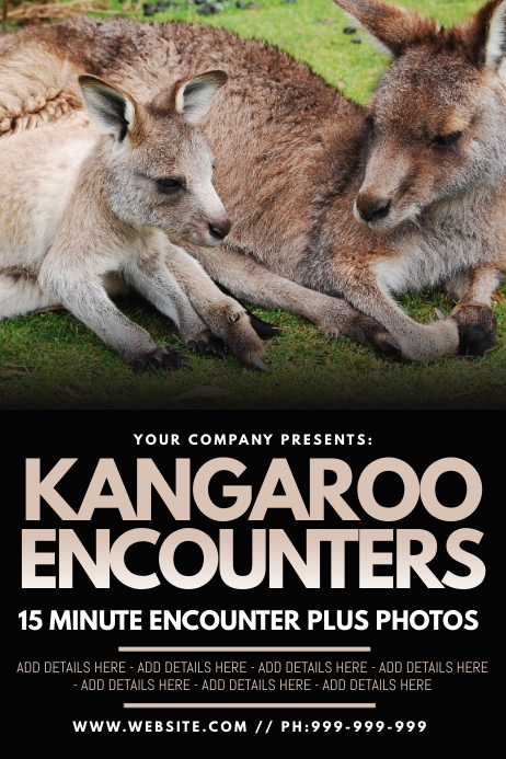 Kangaroo Encounters Poster