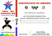 karate certificate A4 template