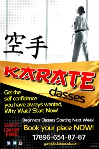 Karate Classes Video