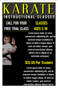 Karate Flyer Poster template