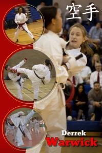 Karate Member Poster