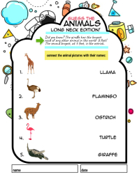 kids elementary match animals worksheet
