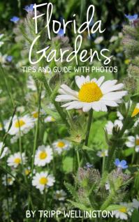 Kindle Book Cover - Garden template