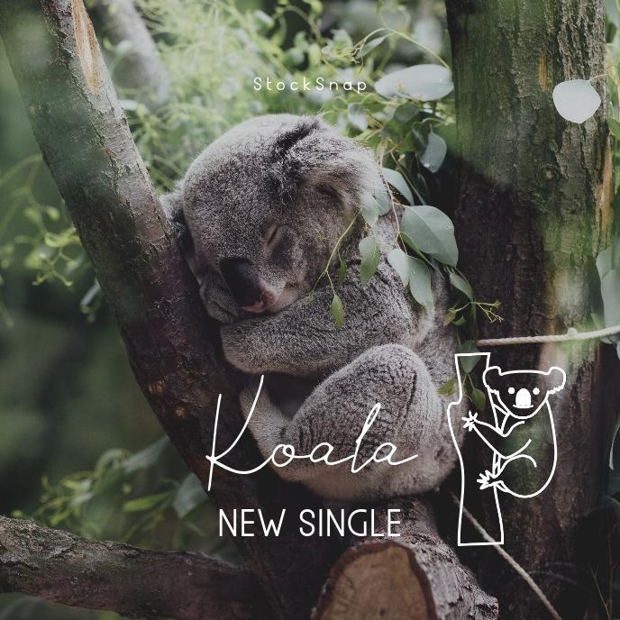 Koala Clean Music CD Cover Art Portada de Álbum template
