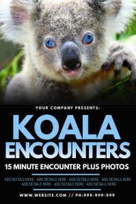 Koala Encounters Poster template