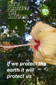 Let's protect the earth Pinterest na Graphic template