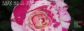 Life is a flower