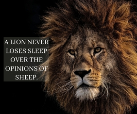 LION AND SHEEP QUOTE TEMPLATE Rettangolo grande