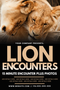 Lion Encounters Poster