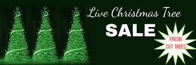 LIVE CHRISTMAS TREE SALE