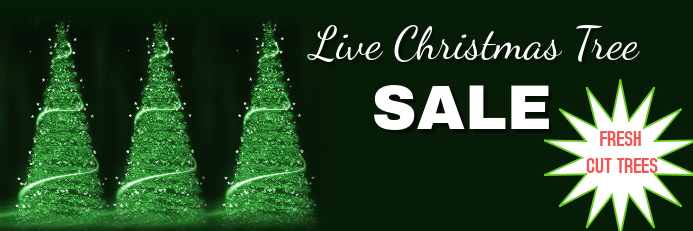 LIVE CHRISTMAS TREE SALE Banner 2 x 6 fod template