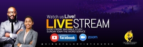 live stream service Banner 2 x 6 template