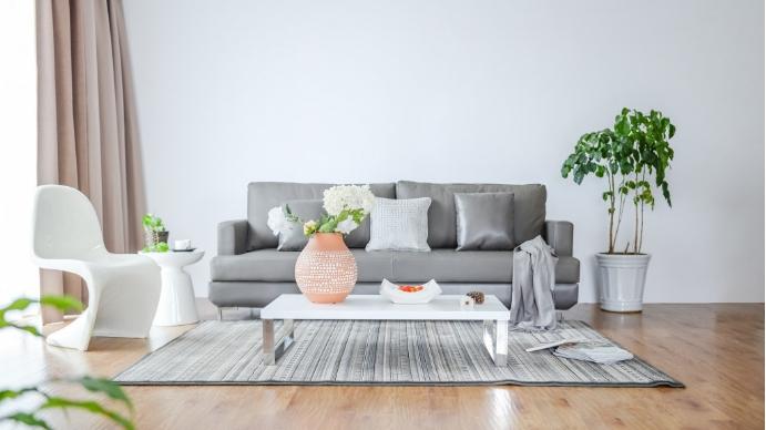 Living Room - Zoom Background Templates Presentazione (16:9)