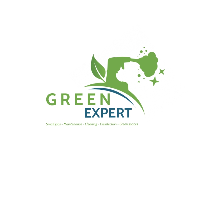 Logo Disinfection Cleaning Service Ilogo template