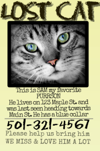 Lost Cat  Lost Pet Flyer Maker