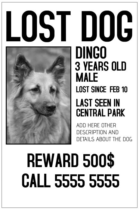 Lost Dog Black And White Poster Template  Lost Dog Poster Template