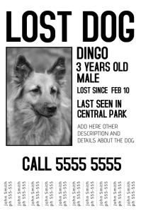 Lost Dog Black And White Poster Template  Missing Posters Template