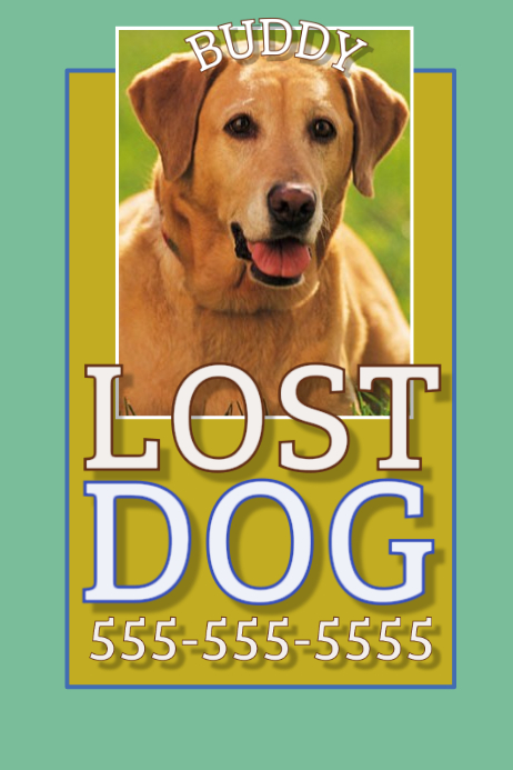 Lost Dog Template  Postermywall