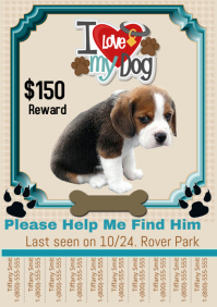 Pet Flyer. Lost Dog Template. Lost Dog