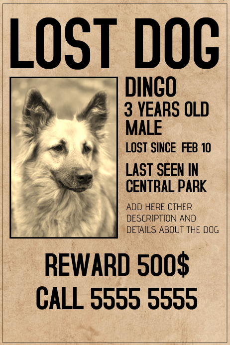 Lost Dog Lot Pet Old Style Poster Template  Lost Pet Template