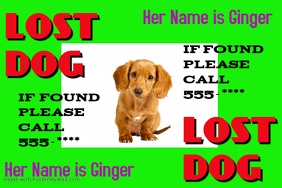 customizable design templates for lost dog poster template