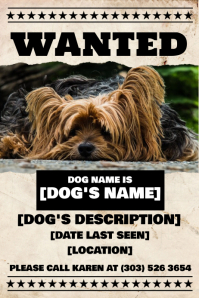 Lost Dog Flyer Poster template