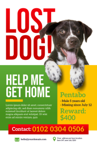 Lost Dog Poster Template Плакат