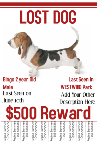 Lost Dog Template  Lost Dog Poster Template