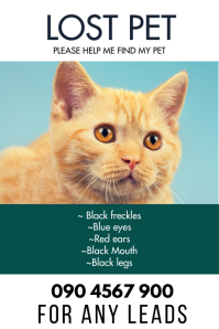 LOST PET FLYER Poster template