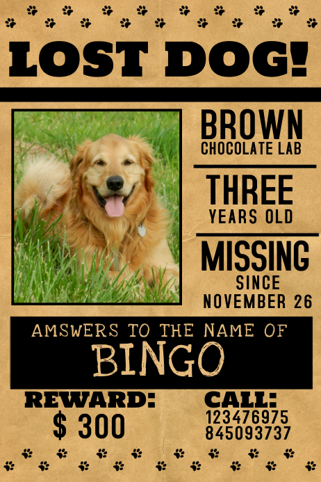 photograph regarding Printable Lost Pet Flyer named Shed Doggy Flyer Template PosterMyWall