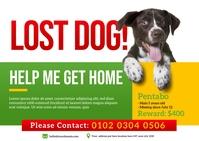Lost Pet Postcard template