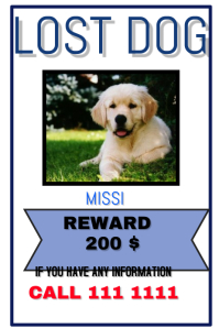 LOst Pet  Lost Dog Flyer Examples