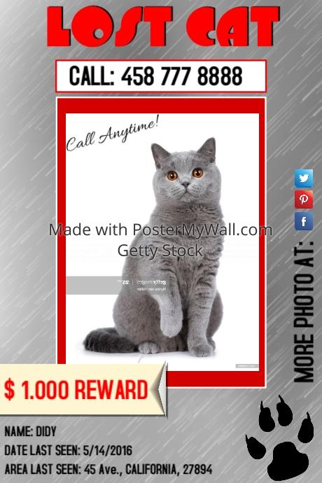 lostcat1