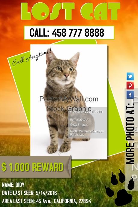 lostcat2